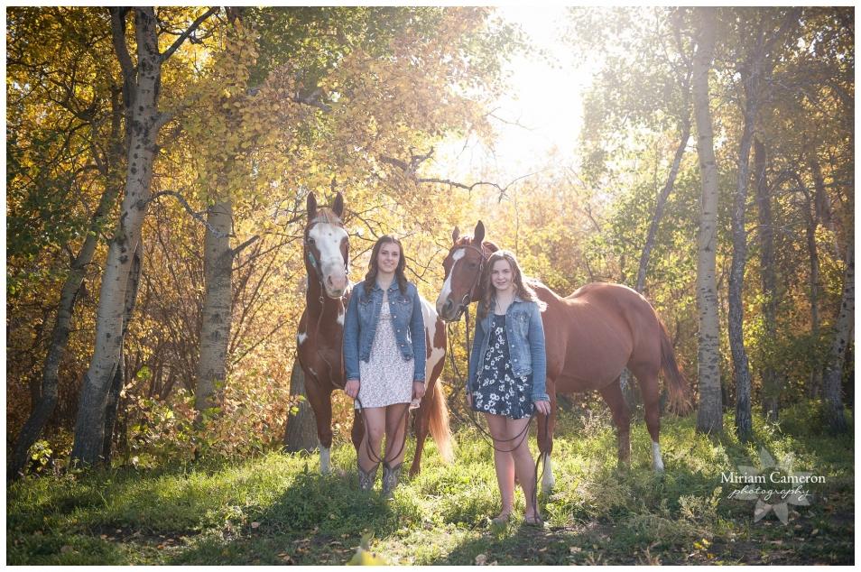 vegreville equine photographer